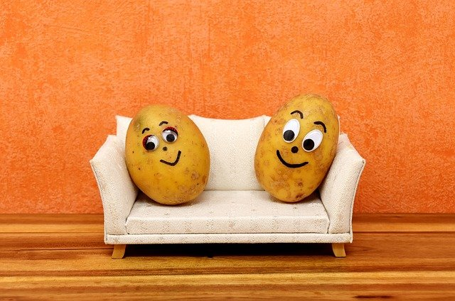 couch-potatoes-3116580_640